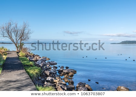 Lake Taupo Buoy Stock photo © Undy