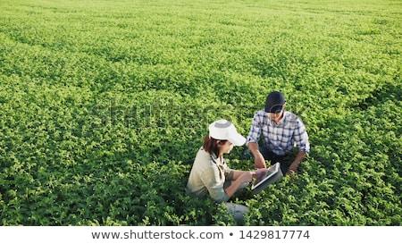 Pareja de trabajo campo orgánico granja negocios Foto stock © HighwayStarz