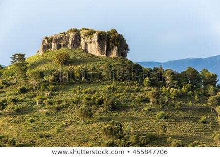 Италия крыши плитка Villa деревне Средиземное море Сток-фото © Dserra1