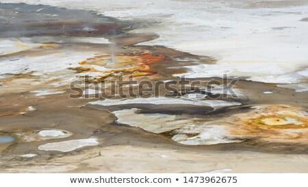 Gejzer krajobraz zdalnego pary dość zewnątrz Zdjęcia stock © wildnerdpix