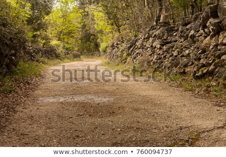 Cres dry stone wall and way  Stock photo © LianeM