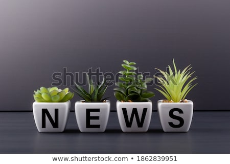 news word stock photo © fuzzbones0