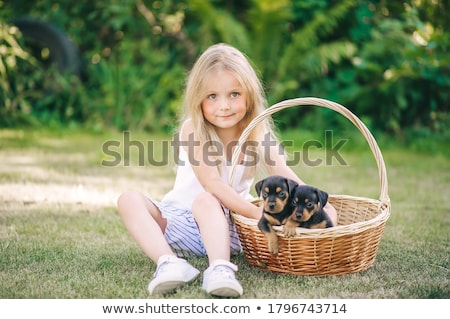 little girl with dachshund sits on grass stock photo © Paha_L