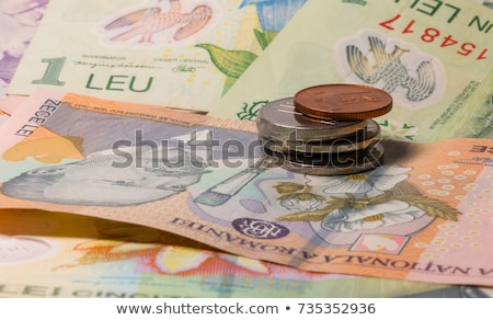 Different banknotes and coins  of Romania money Stock photo © CaptureLight