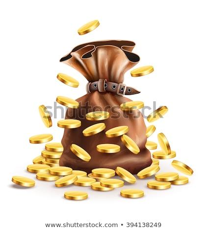 banca · completo · soldi · oro · illustrazione · monete - foto d'archivio © loopall