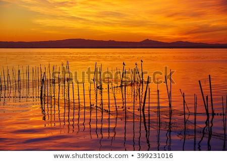 La Albufera lake sunset in El Saler of Valencia Stock photo © lunamarina