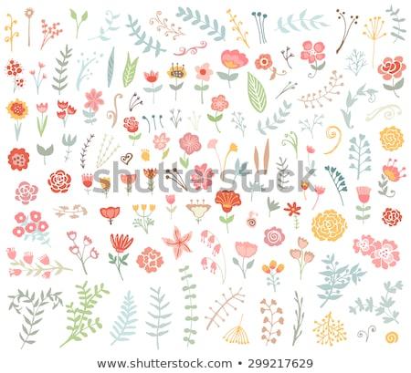 set of sketchy flower stock photo © frescomovie