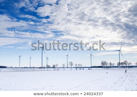 Szél tél tájkép ködös nap Stock fotó © meinzahn