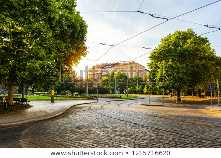 Stock photo: Empty bicycle street lane on autumn morning