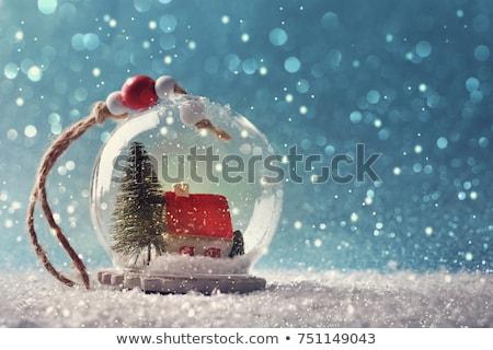 hó · földgömb · hóember · vektor · fa · boldog - stock fotó © kjpargeter