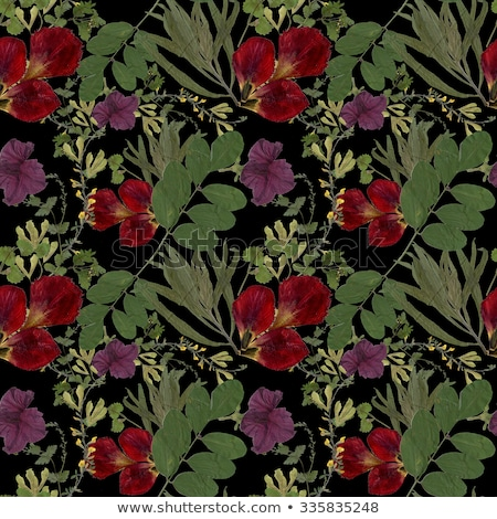 Vintage Cowberry Seamless Pattern Stock photo © ConceptCafe