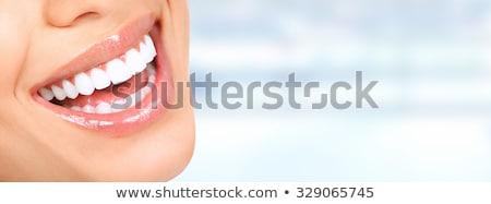 Branco dente banners três cor belo Foto stock © Tefi