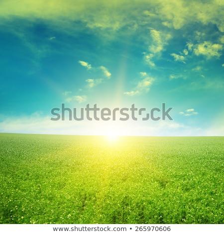 piękna · Świt · mętny · niebo · chmury · słońce - zdjęcia stock © serg64
