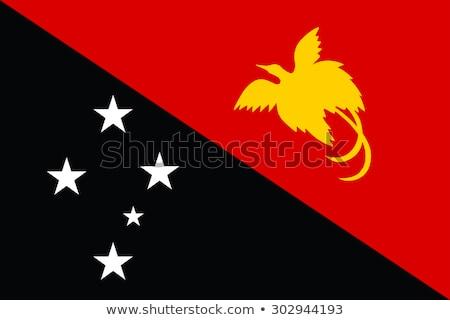 Папуа-Новая Гвинея флаг вектора белый большой набор Сток-фото © butenkow