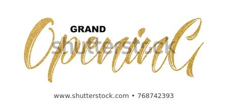 Dourado vip assinar isolado branco gradiente Foto stock © barbaliss