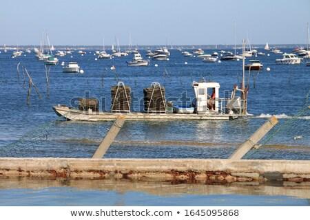 Landscape with Oyster boat Stock photo © ivonnewierink