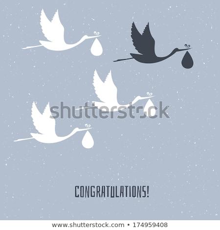 Bebek duyuru leylek örnek doğa kuş Stok fotoğraf © adrenalina