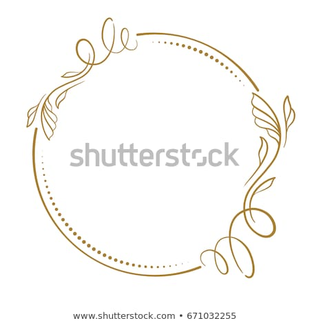 Vector flourish circle and frames Stock photo © ShustrikS