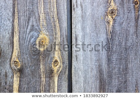 антикварная · шаблон · коричневый · двери - Сток-фото © johnnychaos