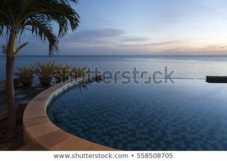 Balinese swimming pool Stock photo © leeser