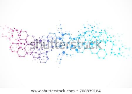 Molekularny struktury odizolowany biały wody Zdjęcia stock © ozaiachin
