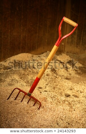 Horse stable witth straw fork tool, sawdust. Stock photo © lunamarina