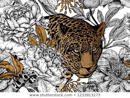 Gyönyörű leopárd vad afrikai szavanna tudományos Stock fotó © ajn