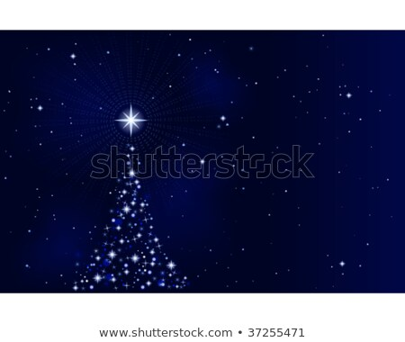 peaceful starry night silent and tranquil stock photo © wenani