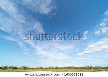cloudscape - stormy blue Stock photo © dgilder