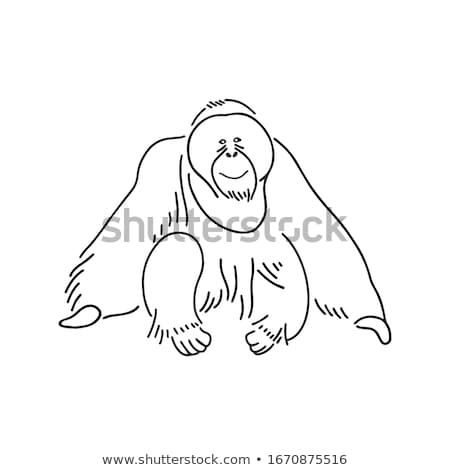doodle orangutan Stock photo © netkov1