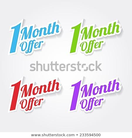 1 месяц предлагать синий вектора икона дизайна Сток-фото © rizwanali3d