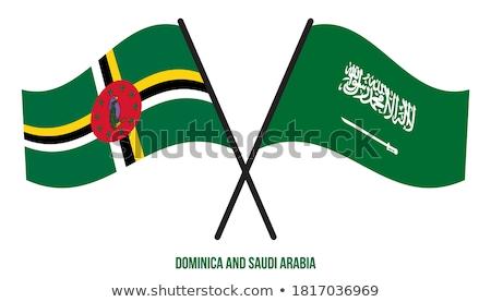 Saoedi-Arabië Dominica vlaggen puzzel geïsoleerd witte Stockfoto © Istanbul2009