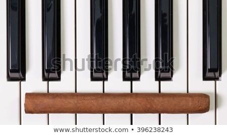 Piano clavier luxe cigare détail danse Photo stock © CaptureLight
