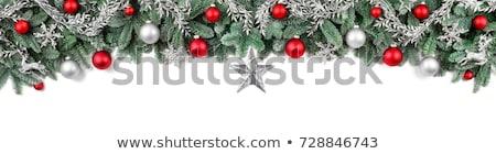 красочный красный Рождества гирлянда границе дерево Сток-фото © ozgur
