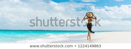 nő · fürdőruha · tengerpart · áll · tenger · boldog - stock fotó © deandrobot