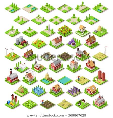 Rural farm house isometric 3D element Stock photo © studioworkstock