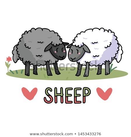グレー 子羊 アイコン 動物 実例 見える ストックフォト © lenm