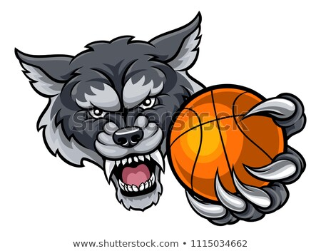 Wolf Holding Basketball Ball Mascot Stock photo © Krisdog