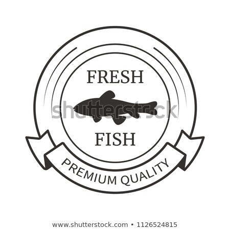 Vector Round Emblems With Ribbon and Fish Shadow Stock photo © robuart