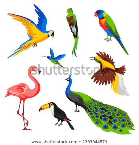 papegaai · vogels · permanente · rij · familie · menigte - stockfoto © galitskaya