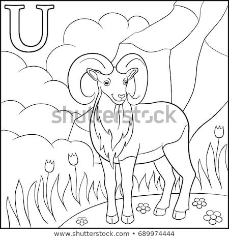 Pädagogisch Spiel Ausmalbuch schwarz weiß Karikatur Illustration Stock foto © izakowski
