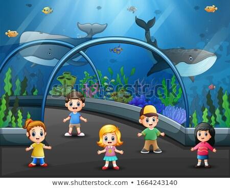 Dzieci akwarium pełny ryb ilustracja dziecko Zdjęcia stock © colematt