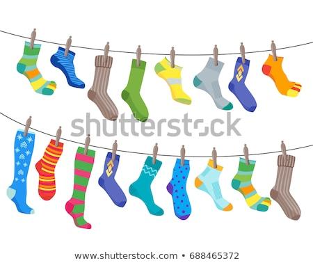 Ingesteld icon gekleurd sokken collectie ontwerp Stockfoto © netkov1