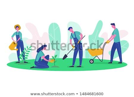 Gazdálkodás emberek ültet aratás mezőgazdaság vektor Stock fotó © robuart