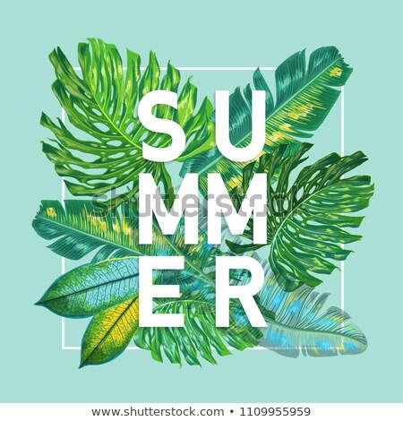 летнее время пляж отпуск плакатов надувной матрац Сток-фото © robuart