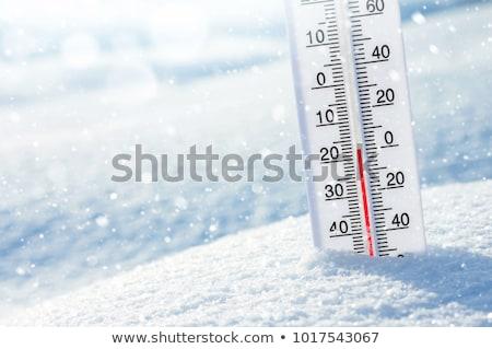 Termometr zimno zimą ilustracja projektu sztuki Zdjęcia stock © bluering