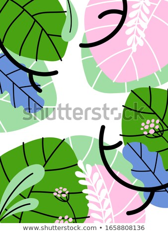 Pastel color  vector banner with exotic plants. Editable stroke Stock photo © ussr