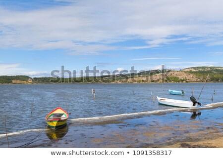 Lake near Gruissan in France Stock photo © ivonnewierink