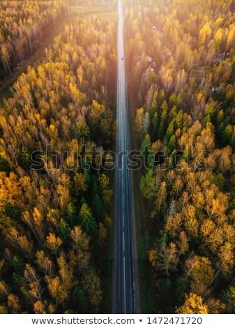 автомобилей закат шоссе небе солнце аннотация Сток-фото © Iscatel
