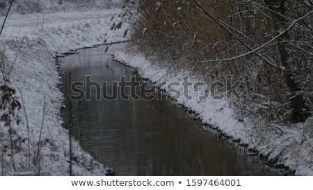 frosty snow covered grass ditch view Stock photo © morrbyte